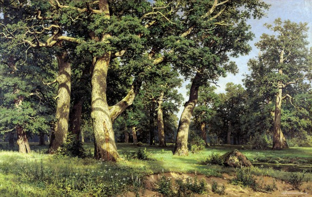 Oak wood(Ivan Shishkin)