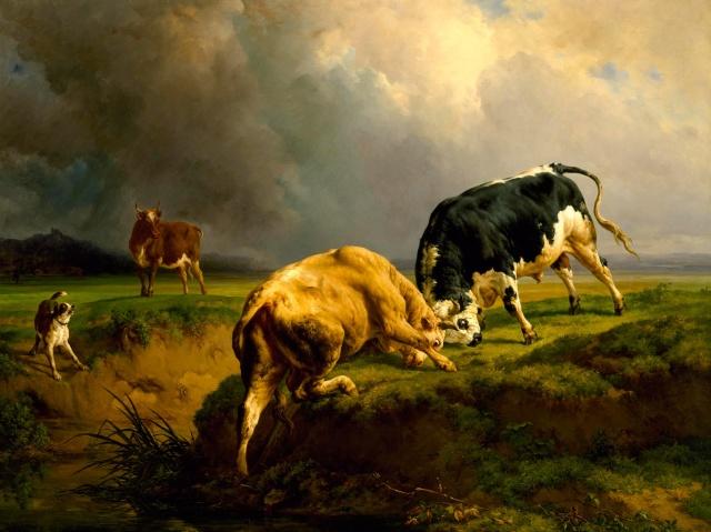 Un combat de de taureau(Jacques Raymond Brascassat)